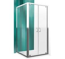 Душевая дверь Roltechnik LLD02/1000 (распашная, 2 створки)